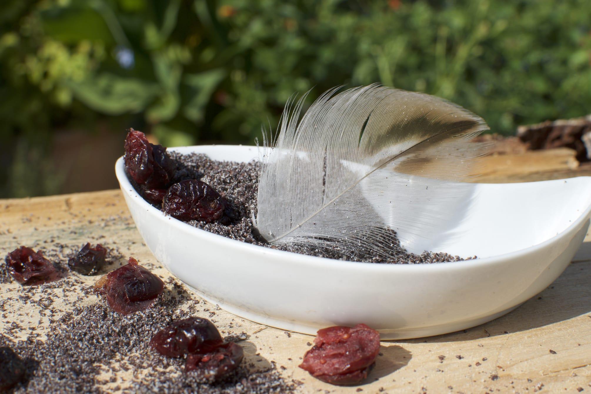 Feder in weißer Schüssel mit Mohn und Cranberries
